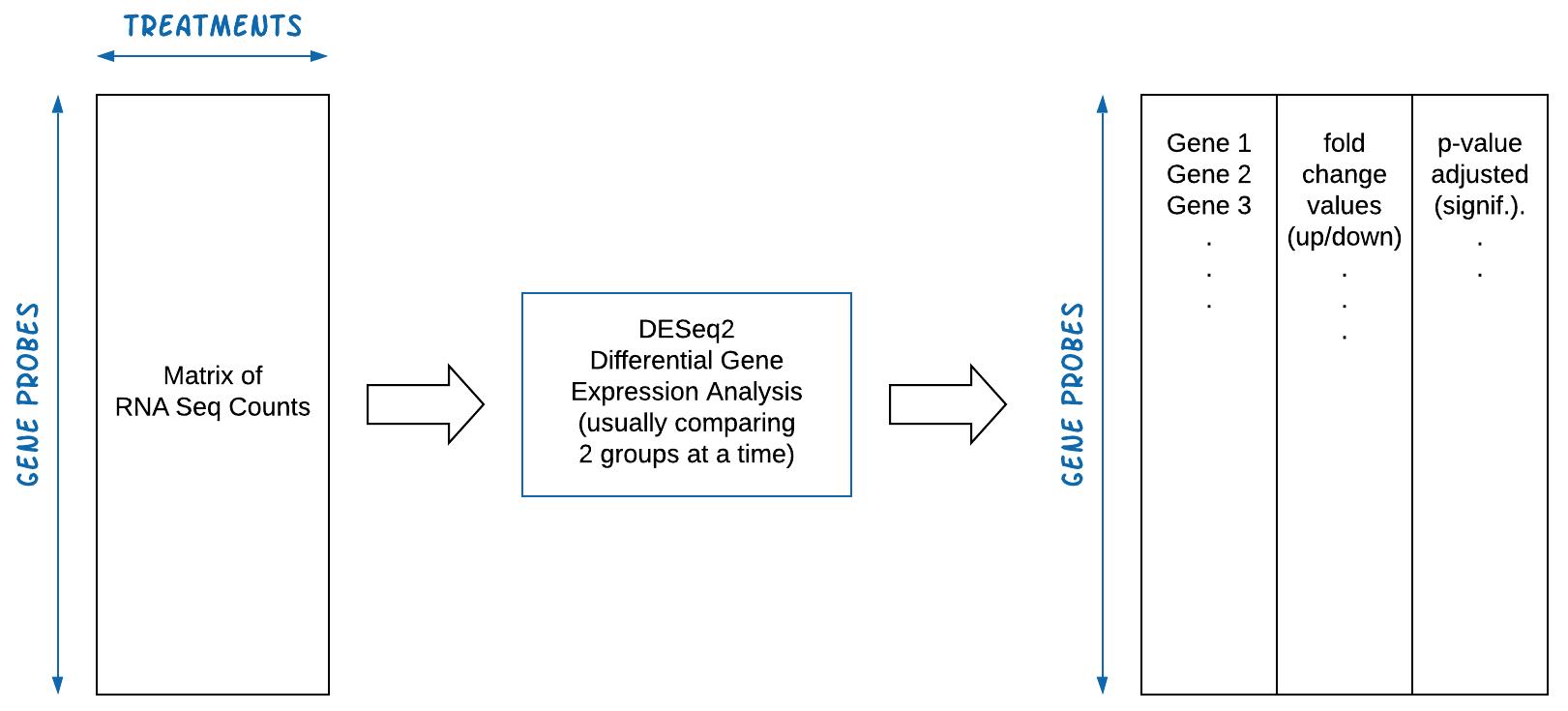 DESeq2 Overview
